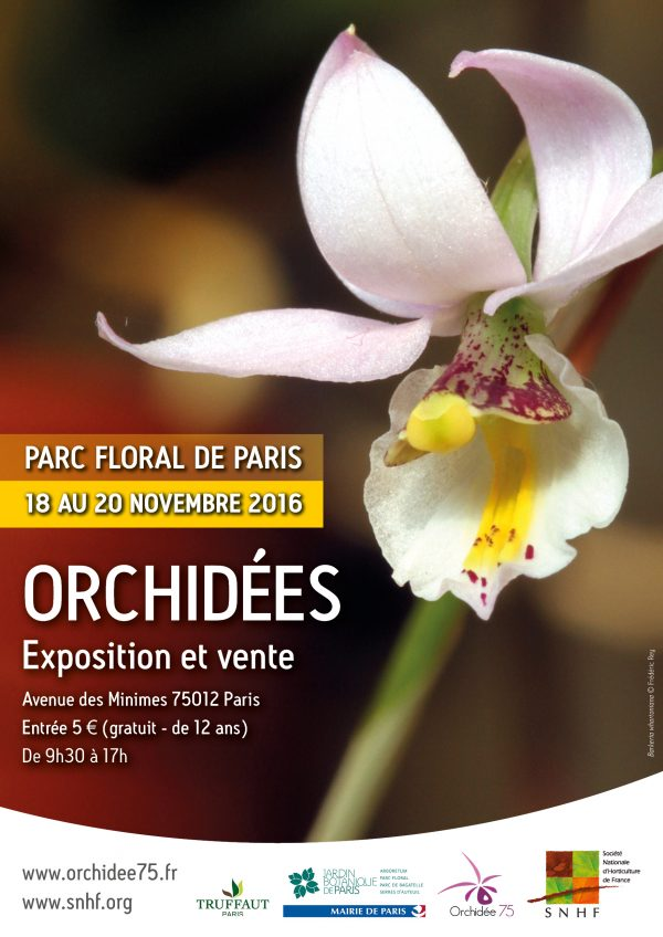 Orchidées, du 18 au 20 novembre 2016 au Parc Floral de Paris